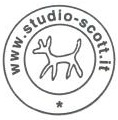 Studio Scott logo